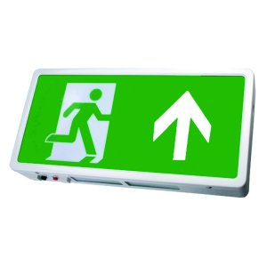 LED Emergency Light Exit box (Maintained)